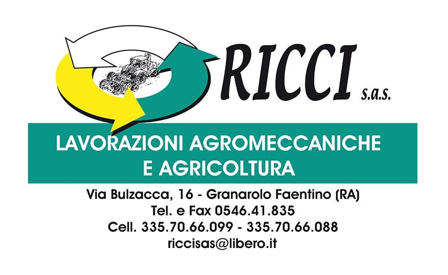 ricci sas_medium Convegni - Partner