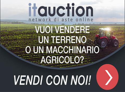 it-auction-aste-online.jpg